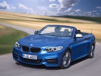 2015 BMW 2 Series Convertible, 61 of 71