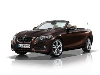 2015 BMW 2 Series Convertible, 64 of 71