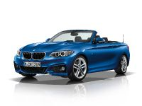 2015 BMW 2 Series Convertible, 67 of 71
