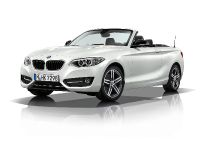 2015 BMW 2 Series Convertible, 68 of 71
