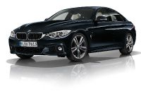 2015 BMW 4-Series Gran Coupe, 18 of 99