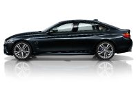 2015 BMW 4-Series Gran Coupe, 25 of 99