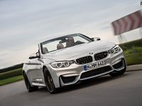 2015 BMW F83 M4 Convertible , 7 of 240
