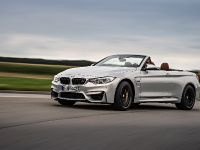 2015 BMW F83 M4 Convertible , 8 of 240