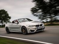2015 BMW F83 M4 Convertible , 9 of 240