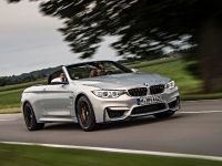 2015 BMW F83 M4 Convertible , 10 of 240