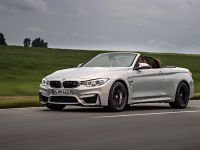 2015 BMW F83 M4 Convertible , 11 of 240