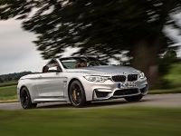 2015 BMW F83 M4 Convertible , 13 of 240