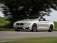2015 BMW F83 M4 Convertible , 14 of 240
