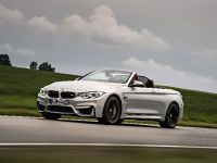 2015 BMW F83 M4 Convertible , 15 of 240