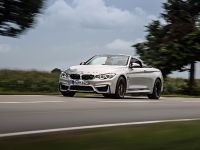 2015 BMW F83 M4 Convertible , 17 of 240