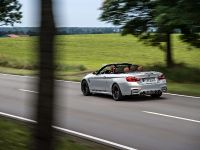 2015 BMW F83 M4 Convertible , 19 of 240