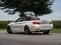 2015 BMW F83 M4 Convertible , 20 of 240