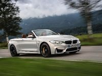 2015 BMW F83 M4 Convertible , 21 of 240