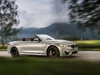 2015 BMW F83 M4 Convertible , 22 of 240