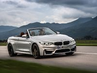 2015 BMW F83 M4 Convertible , 24 of 240