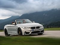 2015 BMW F83 M4 Convertible , 25 of 240
