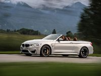2015 BMW F83 M4 Convertible , 29 of 240