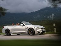 2015 BMW F83 M4 Convertible , 30 of 240