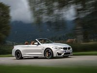 2015 BMW F83 M4 Convertible , 31 of 240