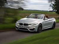 2015 BMW F83 M4 Convertible , 34 of 240