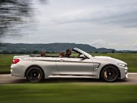 2015 BMW F83 M4 Convertible , 40 of 240