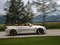 2015 BMW F83 M4 Convertible , 41 of 240