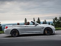 2015 BMW F83 M4 Convertible , 59 of 240