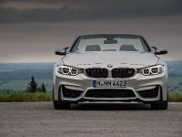 2015 BMW F83 M4 Convertible , 74 of 240