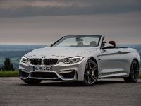 2015 BMW F83 M4 Convertible , 75 of 240