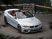 2015 BMW F83 M4 Convertible , 97 of 240