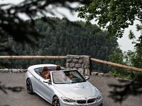 2015 BMW F83 M4 Convertible , 98 of 240