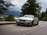 2015 BMW F83 M4 Convertible , 102 of 240