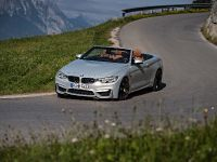 2015 BMW F83 M4 Convertible , 155 of 240