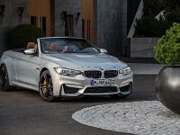 2015 BMW F83 M4 Convertible , 165 of 240