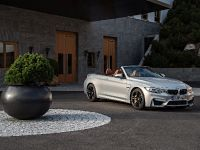 2015 BMW F83 M4 Convertible , 167 of 240