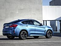 2015 BMW X6 M, 5 of 26