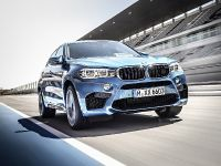 2015 BMW X6 M, 11 of 26