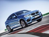 2015 BMW X6 M, 12 of 26