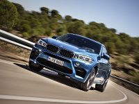 2015 BMW X6 M, 14 of 26