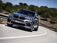 2015 BMW X6 M, 15 of 26