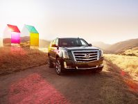 2015 Cadillac Escalade, 5 of 18