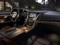 2015 Cadillac Escalade, 12 of 18