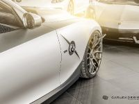2015 Carlex Design BMW Z4 Rampant, 15 of 15