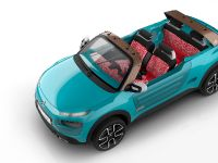 2015 Citroen Cactus M Concept, 3 of 8