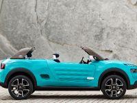 2015 Citroen Cactus M Concept, 5 of 8