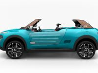 2015 Citroen Cactus M Concept, 6 of 8