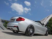 2015 dÄHLer BMW M235i Cabriolet  , 12 of 21