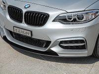 2015 dÄHLer BMW M235i Cabriolet  , 15 of 21