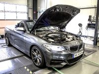2015 DTE-Systems BMW M235i, 3 of 10